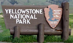 Idaho Dunes RV Local Attractions: Yellowstone National Park